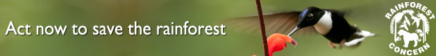 Click to view Rainforest Concern