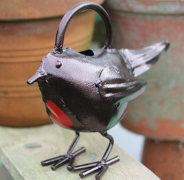 Eden Project robin watering can.jpg