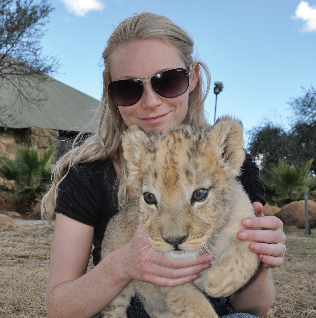 Volunteering with lion conservation Charity Choice.jpg