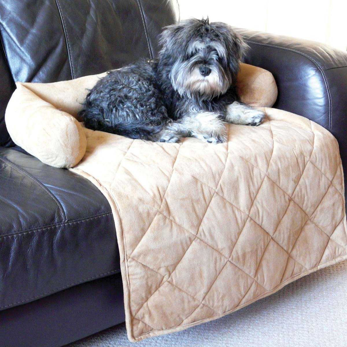 Sofa Throws For Dogs