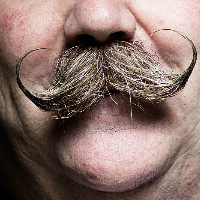 Movember – Welcome to the moustache month