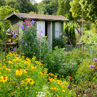 Celebrate National Allotments Week!