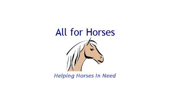 all-for-horses-238500 -  - image 1