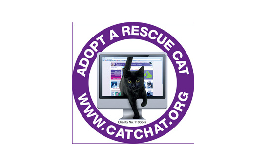 Cat Chat - the Cat Rescue Resource profile image 1