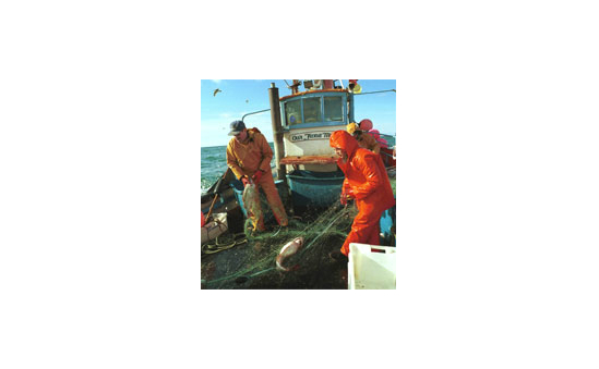 The Fishermen's Mission profile image 2