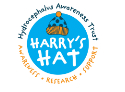 Harry's Hydrocephalus Awareness Trust