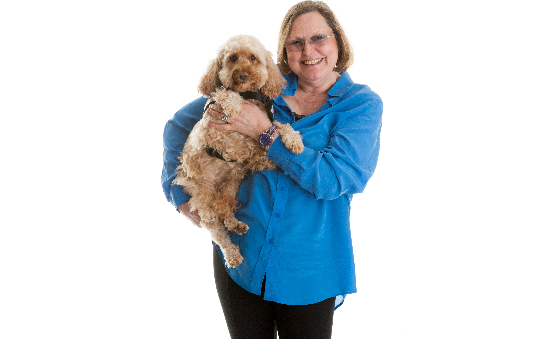 Hearing Dogs for Deaf People (Head Office) profile image 1