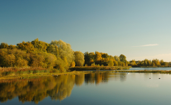 Lincolnshire Wildlife Trust profile image 3