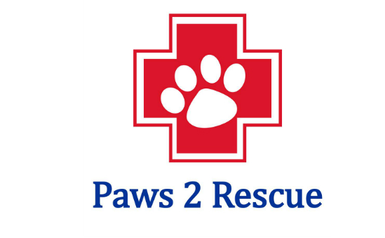 Paws2rescue profile image 1