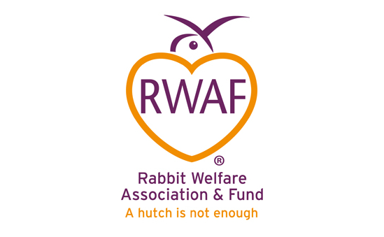Rabbit Welfare Fund profile image 1