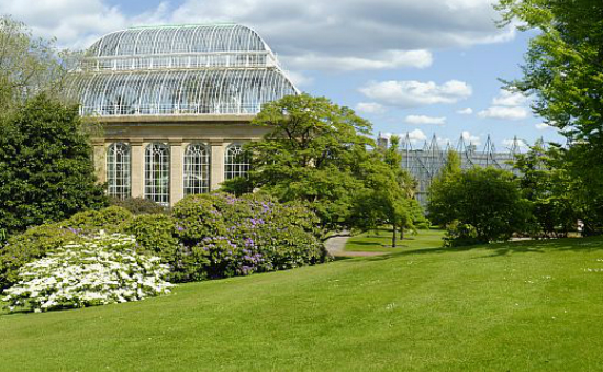 The Royal Botanic Garden Edinburgh profile image 1