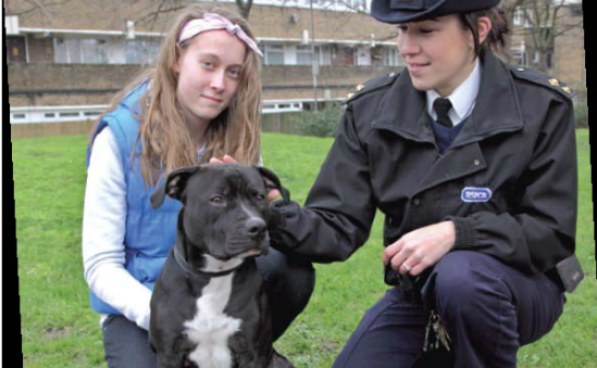 RSPCA Wimbledon and District profile image 6