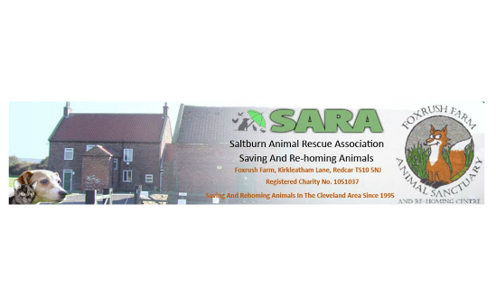 Saltburn Animal Rescue Association profile image 1