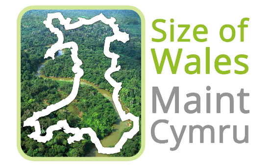 Size Of Wales profile image 1