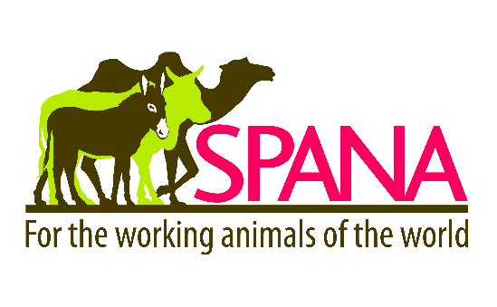 Society for the Protection of Animals Abroad (SPANA) profile image 1