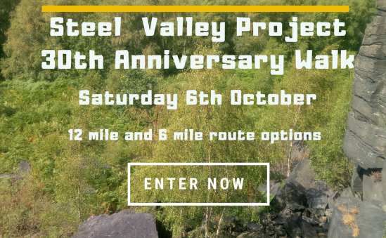 steelvalleyproject -  - image 1