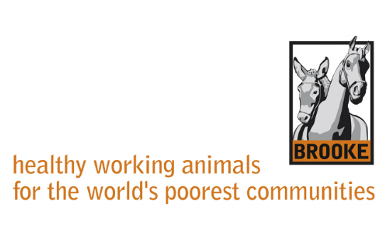 The Brooke Hospital For Animals profile image 1