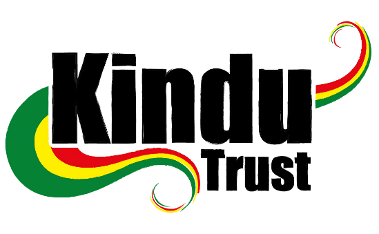 The Kindu Trust profile image 1